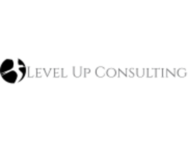 Level Up Consulting